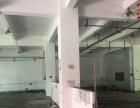 石岩镇中心新空出一楼550平方带装修厂房出租