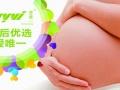 专业级别产妇护理用品招重庆区域代理商