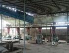 乐东 九所 厂房 15000平米