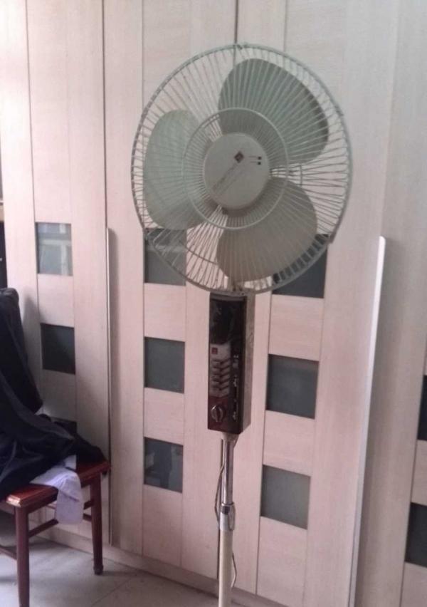 落地扇落地电风扇电风扇电扇老品牌长城牌闲置转让