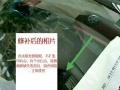 汽车前挡玻璃破碎预约上门修补修复深圳东莞地区