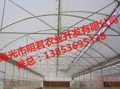 智能连栋温室建造商,哪里有提供靠谱的连栋玻璃温室大棚