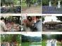 深圳周边东莞农家乐松山湖生态园欢迎您
