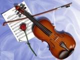 鄭州哪里有賣小提琴的