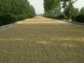 中华南 中华大街和107国道中间 土地 33300平米