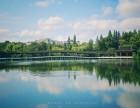 上海企业团建娱乐项目活动策划去长兴岛桔园农庄