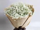 一束鲜花,一生感动,海量图库,全城配送