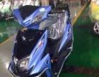 各种价位的摩托车都有 全部可以分期付款首付300马上拿车