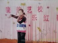 少儿声乐, 钢琴,小提琴, 架子豉,舞蹈,学校.
