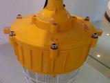一体式节能防爆灯 GTBG8110  防爆节能灯