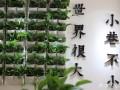 青岛小巷见面酸菜鱼面加盟总部 总部开店扶持一条龙