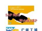 深圳云计算ERP软件-优选SAP总代广州