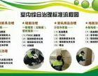 上海专业除甲醛