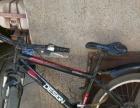闲置山地自行车便宜卖