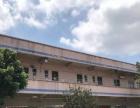 横沥新出独院钢构厂房