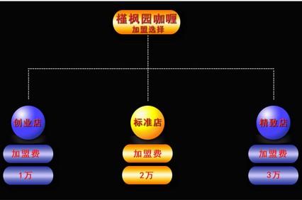 槿枫园咖喱加盟模式1.jpg