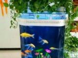 魚缸清洗魚缸護理魚缸維修送魚上門服務