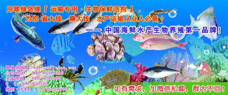 翠绿岛海鲜水产生物保鲜活剂让海鲜个头饱满,光泽细腻鲜亮