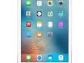 iPad Pro 32G 国行 WiFi 平板电脑 在保修期内