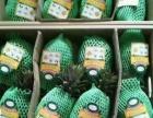 海南由由农业免费招热带水果微商代理