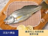 渔公码头海鲜礼盒A3型 同城包邮