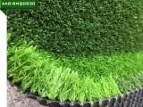 免填充足球场人造草坪