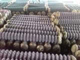渣石边坡用菱形铁丝网防护,英旭镀锌勾花铁丝网供应