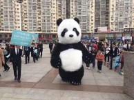 成都全新卡通人偶租赁春晚大熊猫小黄人 卡通狗狗 网红熊等