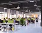 武汉网站建设+关键词优化+全网营销服务
