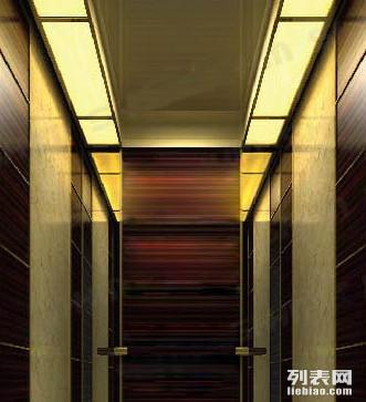 专业住宅小区 别墅电梯翻新装潢 厅门改包_广州装修
