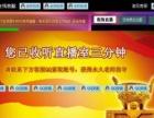 网页版金融财经网站直播间设计