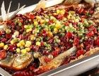 开一家龙潮美式炭火烤鱼怎么样?