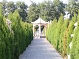 北京市大兴区,永福公墓价格对比其他公墓价格
