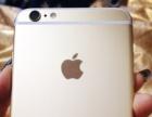女性自用,价格可以小刀金色 苹果 iPhone5s 64...