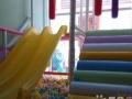 0-6岁婴幼儿托管中心(新式托儿所) 扩招啦