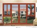 南宁市施远门窗 铝合金门窗 金刚网纱窗 防护网 拖拉门窗