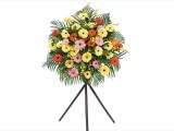 开业花篮 节日花束 活动鲜花 会议用花 全城免费送