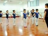 长春少儿成人舞蹈培训班 艺考舞蹈培训班