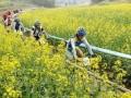 武汉周边骑行-武汉周边骑行拓展,武汉春天户外团队建设