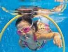 游泳班,成人包教会