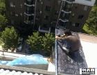 天津 乐家 防水补漏承接阳台 露台各种新旧屋面防水工程