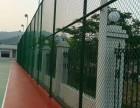 体育场专用围网 深圳围网安装 球场围网立柱