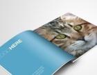 中山|LOGO设计|画册设计|包装设计|网店美工|