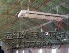 电热红外辐射采暖器 电辐射加热器 SRJF-X-8
