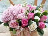 成都鲜花预定 圣诞节玫瑰鲜花 平安夜鲜花礼物全城免费配送