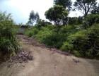 从化区太平镇广裕祠古村落旅游区230亩果园农场转让