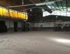 江海南山工业区300平方厂房