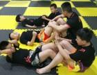开远门佰格武术搏击俱乐部,专业武术散打培训机构
