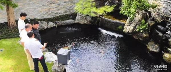 鱼菜共生系统,吃奶鱼池钓鱼池设计建造,以最专业的水平给你最放心的