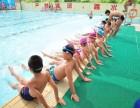 游泳培训,游泳私教深圳罗湖福田南山龙岗宝安专业教练
